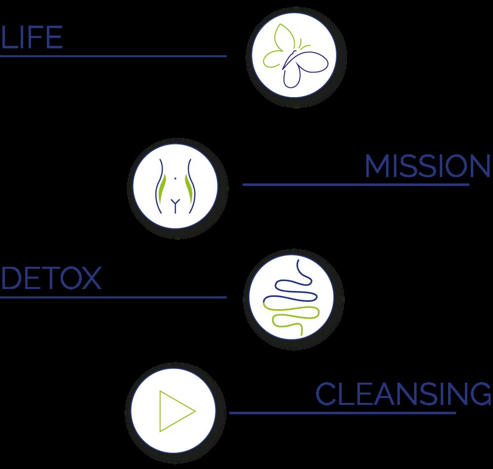 program de slabit metabolic balance